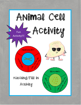 Animal Cell Activity