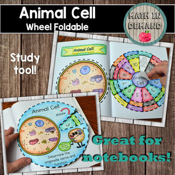 Animal Cell Wheel Foldable