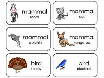 Animal Class Identification Flashcards. Preschool-Kinderga
