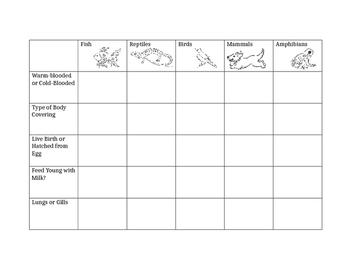 Animal Classification- vertebrates worksheet