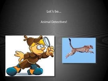 Animal Detectives! Animal Classification