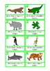 Animal Facts Writing Prompts, Autism & Special Education,