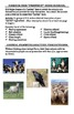 Animal Farm Student Activity Packet