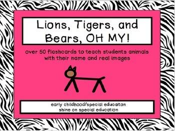 Animal Flashcards - Adapted Book/File Folder