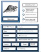 Animal Flashcards- With an Animal Research Template and Wo