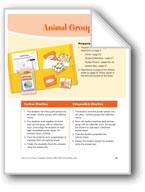 Animal Groups (Animal groups/collective nouns)