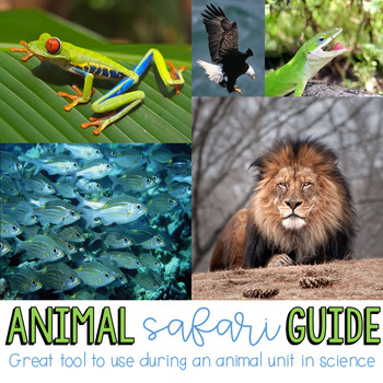 Animal Guide