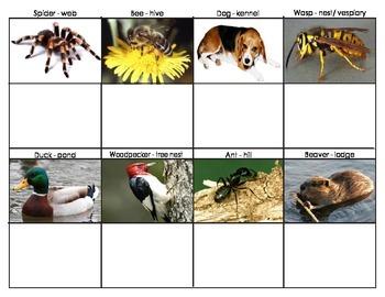 Animal Homes: Mini Matching Cards