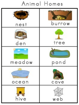Animal Homes Picture Word Bank