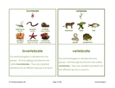 Animal Kingdom Picture Activity Cards