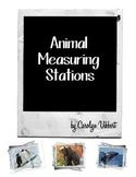 Animal Measuring & Research Stations Bundle