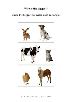 Animal Numeracy measurement and size comparison worksheet