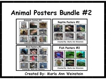 Animal Posters Bundle #2