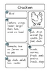 Animal Report Notes