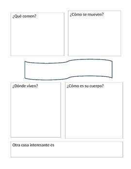 Animal Research Graphic Organizers (Spanish)