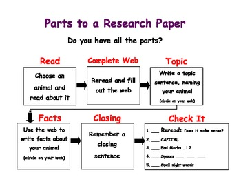 Animal Research Paper Writing - Using a Graphic Organizer