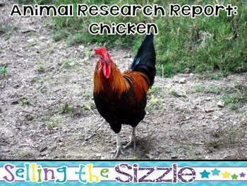 Animal Research Report- Chicken (Bird) A complete CCSS Ali
