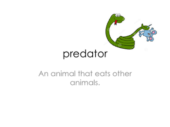 Animal Research Vocabulary Cards