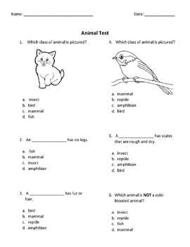 Animal Test - Editable
