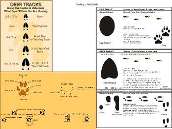 Animal Track Field Guide (Animal Gait Analysis Student tra