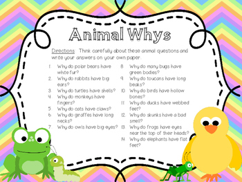 Animal Whys?