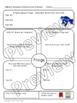 Animal and Habitat Research Bundle Second Grade