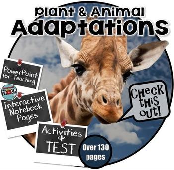 Plant and Animal Adaptations