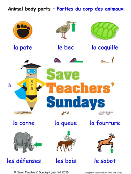 Animal body parts in French Worksheets, Games, Activities