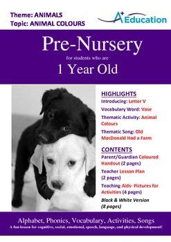 Animals - Animal Colours : Letter V : Vase - Pre-Nursery (