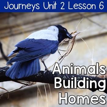 Animals Building Homes: Journeys Unit 2 Lesson 6 Supplemen