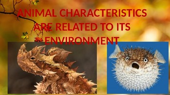 Animals Characteristics Related To The Environment