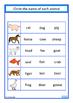 Animals Fine Motor Skills, Matching, Write & Wipe Cards Se