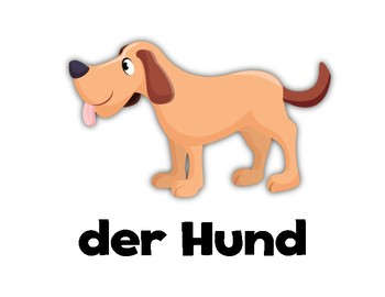 Animals! German Flashcards