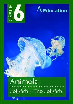 Animals - Jellyfish: The Jellyfish - Grade 6