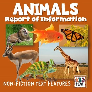 Animals: Report of Information Organizer (Features of Non-