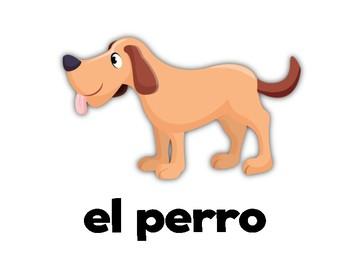 Animals! Spanish Flashcards