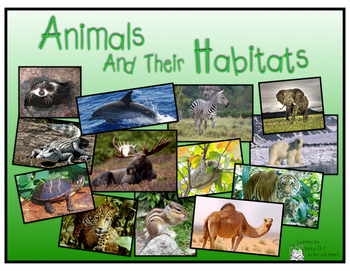 Animals & Their Habitats, PDF version of Keynote Presentat