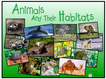 Animals & Their Habitats, Powerpoint Presentation, Part One