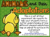 Animals and Their Adaptations: A Set of Hands On Experiments