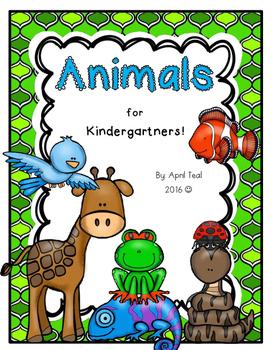 Animals for Kindergartners