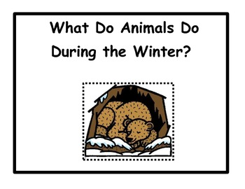Animals in the Winter: Migration, Adaptation,Hibernation B