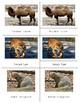 Animals of Asia: Three Part Cards