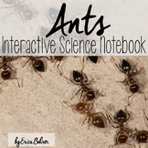 Ants Interactive Notebook