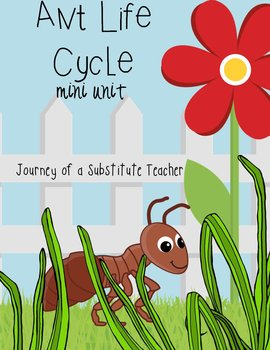 Ant  Life Cycle: Mini Unit