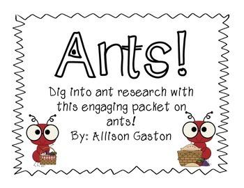 Ant Pack