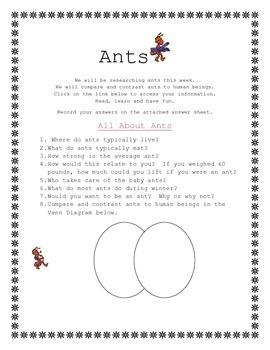 Ant Webquest