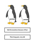 Antarctica by Helen Cowcher: Vocabulary, Writing details/K