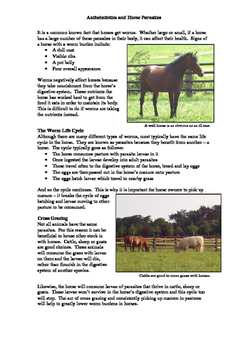 Anthelmintics and Horse Parasites Activity
