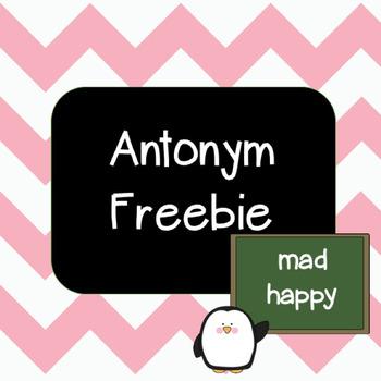 Antonym Freebie