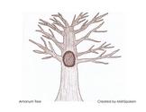 Antonym Tree